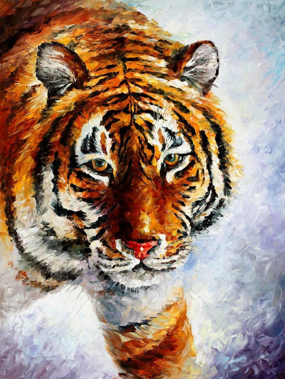 1705       30X40   TIGER ON THE SNOW -5